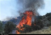 آتش سوزی همزمان 7 منطقه جنگلی کهگیلویه و بویراحمد