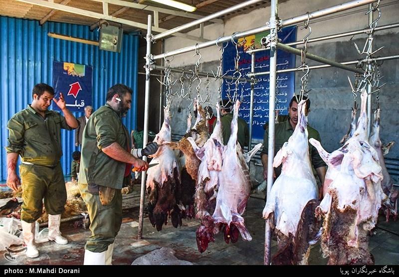 مراکز عرضه گوشت در قم علیرغم کاهش قیمتها همچنان گرانفروشی میکنند
