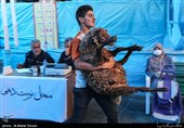 تهران | عرضه بهداشتی دام در روزهای تاسوعا و عاشورا