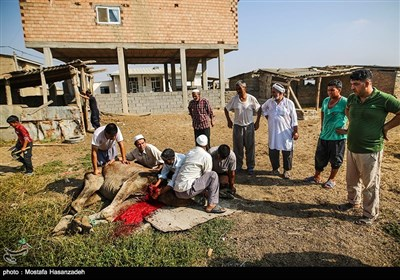 People Celebrate Eid Al-Adha in Iran's Northern Sunni Region