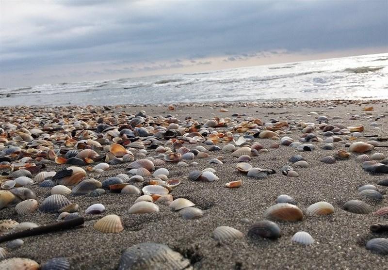 پروژه گردشگری ساحل شهرستان بندرگز با 300 میلیارد تومان اعتبار اجرا میشود
