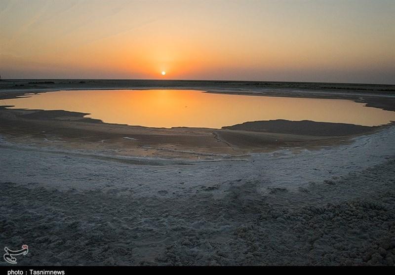 Shadegan: A Unique, Wonderful Wetland Southwest of Iran