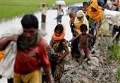 دولت از همه فرصتهای بینالمللی برای توقف جنایات میانمار استفاده کند