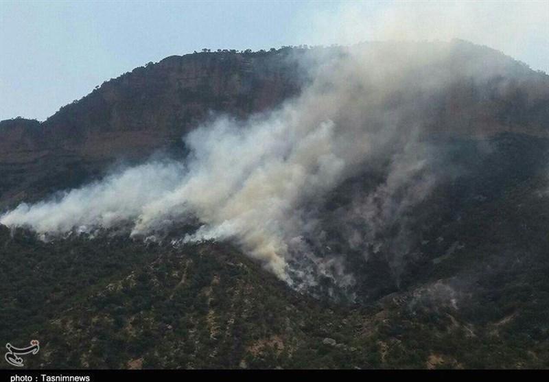 آتش سوزی جنگل های تنگ تامرادی بویراحمد