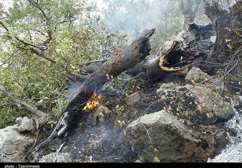 آتشسوزی تنگ ترکان کازورن مهار شد