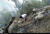 آتشسوزی ارتفاعات فیروزآباد تحت کنترل است