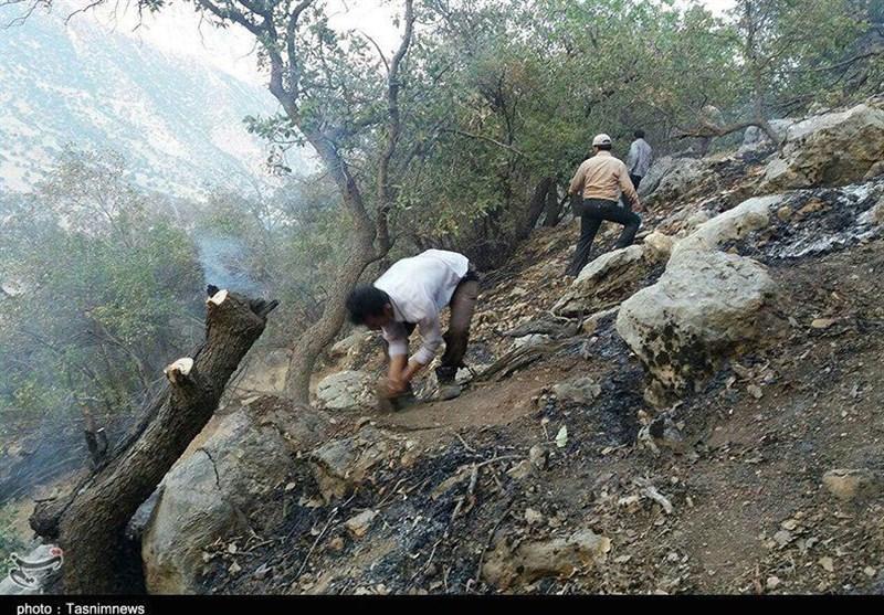 آتشسوزی عرصههای جنگلی بویراحمد مهار شد