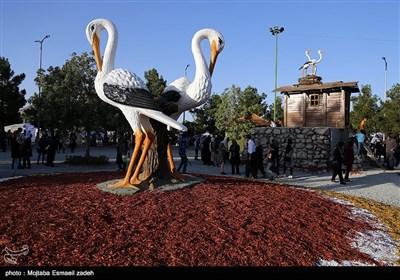 پنجمین جشنواره ملی انگور - ارومیه