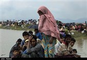 Number of Rohingya Refugees Fleeing Myanmar for Bangladesh Reaches 391,000: IOM