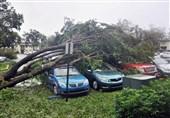 قطعی 5 روزه برق در مناطق طوفان زده فلوریدا جان 8 تن را گرفت
