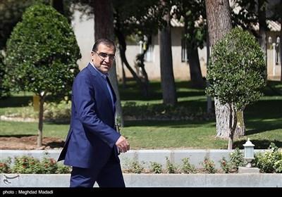 سیدحسن قاضیزاده هاشمی وزیر بهداشت