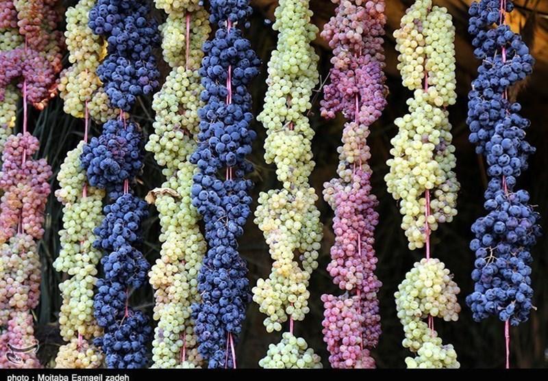 جشنواره انگور ارومیه
