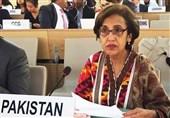 پاکستان: کشمیر اور فلسطین مسائل کا حل اقوام متحدہ کی قراردادوں کے مطابق چاہتے ہیں