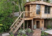 """""""خانه قارچی"""" بهترین خانه سال انگلیس+تصاویر"""