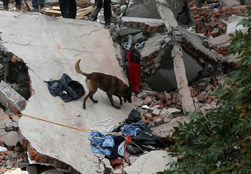 عکس زلزله مکزیک عکس زلزله زلزله امروز اخبار مکزیک