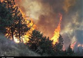 Forest Fire in Northern Iran Still Burning