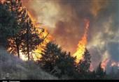 آتشسوزی در جنگلهای رضوانشهر مهار شد