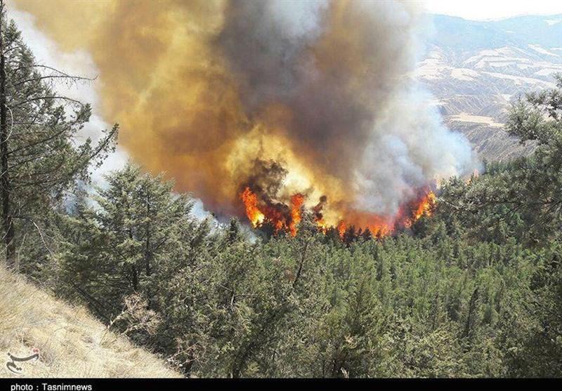 """جنگلهای بلوط کوه"""" گل"""" شهر دهدز در آتش سوخت"""