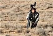 چه چیزهایی یوزپلنگ ایرانی را «در گرداب انقراض» قرار داده است؟