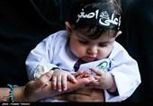 بوشهر|همایش شیرخوارگان حسینی در 41 کشور جهان برگزار میشود