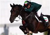 فیلم// حکایت اسبهایی که از سوارکارانشان سواری میگیرند!
