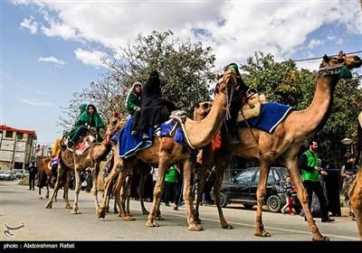 دخول رمزی لقافلة الإمام الحسین (ع) الى کربلا ـ همدان