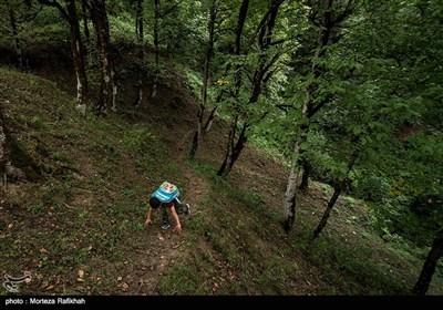 امیر رضا همرنگ دانش آموز پایه اول ابتدایی در اولین روز از سال تحصیلی به سمت مدرسه حرکت میکند. طی کردن مسیر خانه او تا مدرسه از جاده ناهموار و جنگلی درهوای مناسب بیست دقیقه طول میکشد