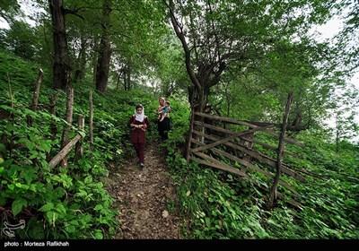 - آرزو و مادرش به همراه برادر کوچکش محمد در اولین روز از سال تحصیلی به طرف مدرسه حرکت میکنند. در روزهایی که هوا خوب باشد طی کردن این مسیر 45 دقیقه از میان جنگل و کوه به طول می انجامد. پدر آرزو دامدار است و به علت بردن دامها به چرا نمیتواند او را در اولین روز از مدرسه همراهی کند