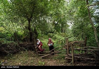 """آرزو در پایان اولین روز از سال تحصیلی به همراه مادر و برادرش به خانه باز میگردند. (در) خانه های روستایی ییلاقی به صورت دروازه های چوبی است که از شاخه های درختان ساخته میشود که در زبان محلی به آن """"بلته"""" میگویند"""