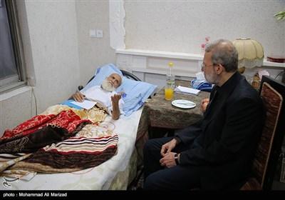 عیادت رئیس مجلس شورای اسلامی از آیت الله حائری شیرازی