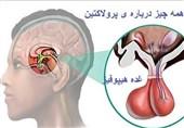 غدهای پُر رمز و راز در ساقه مغز انسان