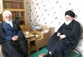 حجتالاسلام ناطقنوری با آیتالله علمالهدی دیدار کرد + تصاویر