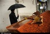 آخر هفته بارانی برای 8 استان کشور / احتمال بارش باران در تهران
