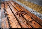 سامانه بارشی جدیدی در راه است/ باران و کاهش دما در کرمانشاه