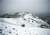 بارش 10 سانتیمتر برف در بلده مازندران