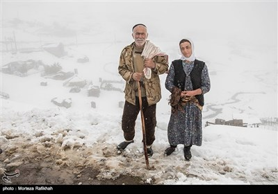 Early Snow Covers Iran's Northern Region