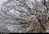 احتمال بارش برف و کاهش دید در جادههای آذربایجان شرقی