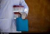 پلمب مراکز دامپزشکی در روز دامپزشکی