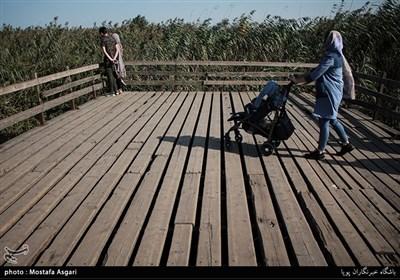 از جمله مناطق زیبای این شهر و استان گیلان،تالاب و پل چوبی بندر کیاشهر است