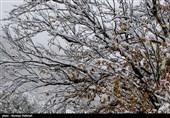 برف و باران مهمان پایان هفته همدانی ها میشود