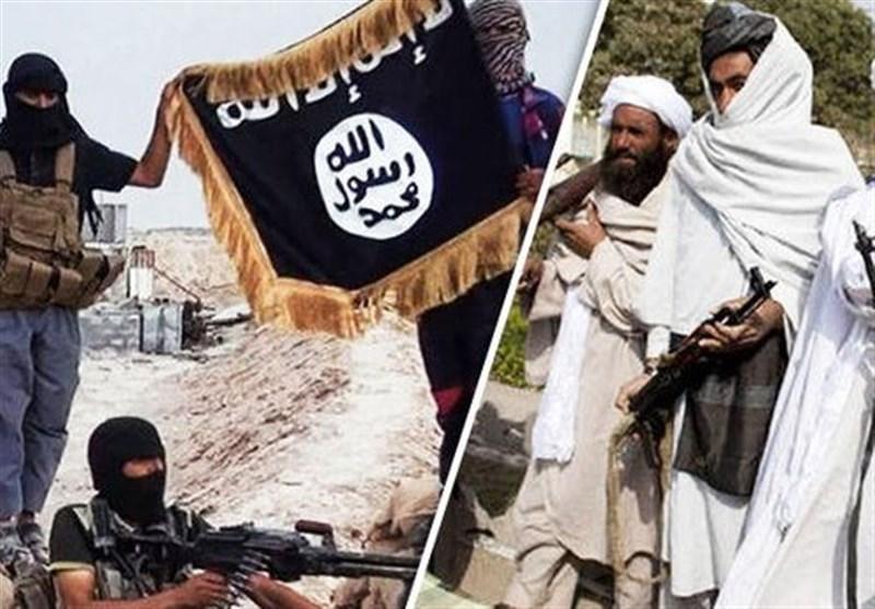 طالبان کا داعش کے ساتھ کسی صورت اتحاد ممکن نہیں/ امیر نے داعش سے مقابلہ کرنے کا حکم دیا ہے