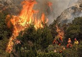 Death Toll in California's Wildfires Rises to 10