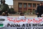 درخواست یک کشور عربی برای خرید هواپیماهای بدون سرنشین از رژیم صهیونیستی