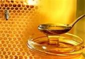 عسل شهرستان سلسله جهانی شده است