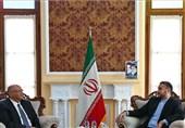 رئیس دفتر حافظ منافع مصر با دستیار لاریجانی دیدار کرد