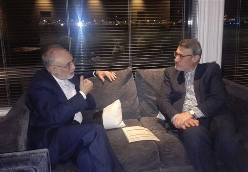 Iran's Salehi in London for Talks on JCPOA