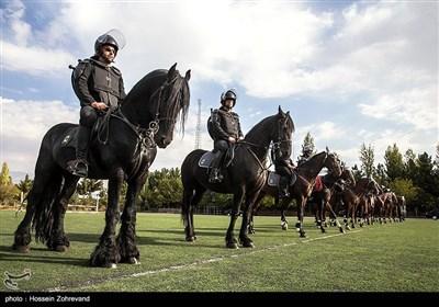 یگان ویژه اسب سواران نیروی انتظامی