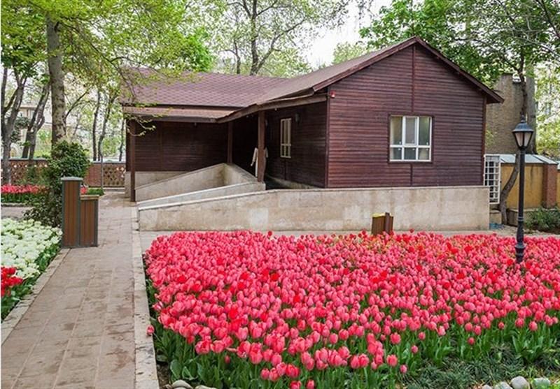 قدمت باغهای شگفتانگیز ایرانی با آهنگ سحرآمیز 50 قرن است