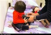 Lack of Oxygen, Not Blood Flow, Delays Brain Maturation in Preterm Infants