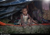 میانمار مانع از فعالیت گزارشگر حقوق بشر سازمان ملل شد